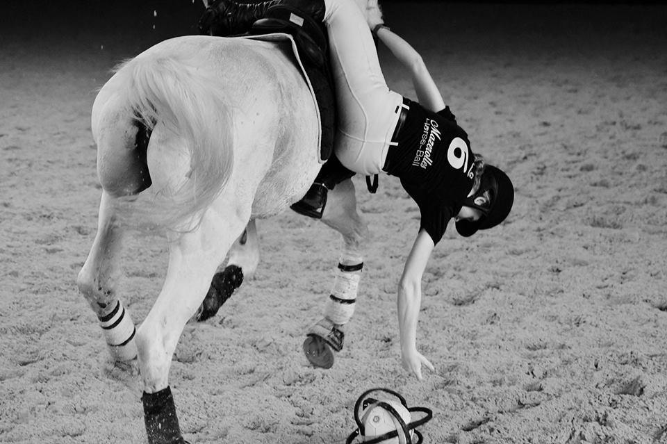 Mazerolles Horse-ball